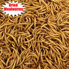 Kyпить Wholesale Bulk Dried Mealworms for Wild Birds Food Blue Bird Chickens Hen Treats на еВаy.соm