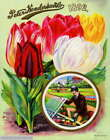 308130 1892 Henderson Tulips Flower Seed Packet Catalogue PRINT POSTER