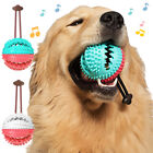 PET DOG PUPPY LEAKAGE FOOD BALL SUCTION CUP SQUEAKY MOLAR CHEW TOY FILL