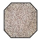 Sunflower Hearts Seeds Wild Bird Parrot Cockatiel Parakeet Food 500g 1kg 1.8kg