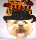 Glitter Pumpkin Headband Dog Garland Pet Halloween Costume S/M NWT
