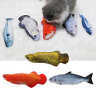 Catnip Toy - Interactive Cat Toys   Cat Toy Catnip Toys for Cat to Play