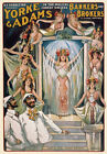 TH21 Vintage Musical comedy Theatre Poster Art A1 A2 A3