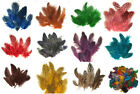 "Spotted Guinea Hen Feathers Body Plumage 1-4"" 11 colors available 7 grams"