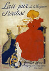 AV53 Vintage French Lait pur sterilise Cat Advertisement Milk Poster A1/A2/A3
