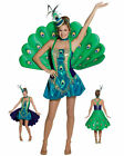 Peacock Bird Animal Tropical Deluxe Dress Up Halloween Teen Adult Costume