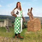 Monty Python & the Holy Grail - Sir Robin Licensed Tunic Halloween Costume