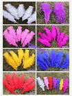 100pcsBig slice of Turkey feather flat feather garment accessories