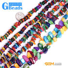 "Multicolor Shell MOP Chips Gemstone Jewelery Making Loose Beads Strand 15"" & 34"""