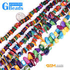 "Multicolor Shell MOP Gemstone Chips Loose Beads For Jewelry Making 15"" & 34"""