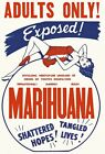 AD49 Vintage Exposed! Marihuana Marijuana Anti Drugs Poster Re-Print A2 A3 A4