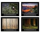 4 Motivational Posters Eagle Canyon Discovery Dedication Trees 22x28 Framed