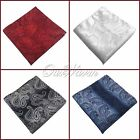 "20Pcs 10"" Paisley Pocket Square Napkin Hanky Wedding Handkerchief Good Quality"