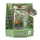 My Butterfly Glass Jar Tap To Fly Toy Pets