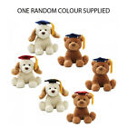 GUND *GRADUATION SOFT TOY WITH SOUND CHOOSE FROM: DOG OR BROWN BEAR* NEW 320549