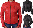 Size 8 10 12 14 16 18 20 NEW Womens BIKER JACKET Real LEATHER Ladies ZIP Coat