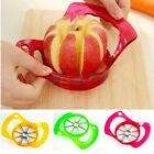 8 Section Fruit Pear Apple Quick Corer and Wedger Slicer Stainless Steel Cutter