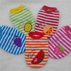 New Cute Fruit Cotton Sweater Baby Pet Clothes Dog Clothing Puppy Sweater