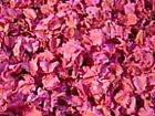 Windmill Pods - Blue-Burgundy-Green-Pink - Potpourri Ingredients - 2oz ? 3 cups