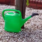 10L LIGHT WEIGHT GREEN GARDEN GREENHOUSE WATERING CAN ROSE PLANTS WATER SPRAYER