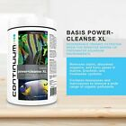 CONTINUUM POWER CLEANSE XL SYNTHETIC FILTER RESIN MASSIVELY OUTPERFORMS CARBON