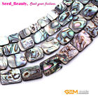 """Natural Abalone Shell Beads For Jewelry Making 15"""" Flat  Rectangle Clips Green"""
