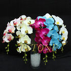 Artificial Butterfly Orchid Silk Flower Phalaenopsis Bouquet Wedding Home Decor