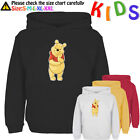 Cute Cartoon Winnie the Pooh Pattern Kids Gift Boy Girl Sweatshirt Hoodie Tops