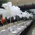 20/50 Beautiful Ostrich Feathers Art For Hat Bridal Bouquets Crafts Deco 25-40cm