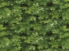 Timeless Treasures Leaves Poplin Quilting Fabric (C2761-Green-M)
