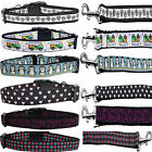 Adjustable Durable Ribbon Nylon Dog Collar And Leash set01