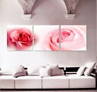Canvas Modern Home Decor HD print art painting rose flowers abstract 3PC -3628