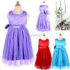 Lovely Baby Kids Toddlers Girl Princess Big Bowknot Pleated Dress Outfit DZ88