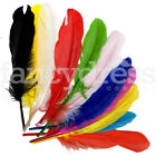 """Craft Card Making Embellishments Pack of 12 8"""" Feathers Scrapbooking Long Large"""