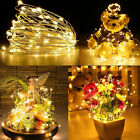 100 LED 33FT Waterproof Copper Wire Warm White Party Decoration String Light New