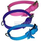 "Genuine Leather Dog Collar Large Glamour Adjustable Padded 1"" Wide 3 Colors"