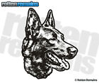 Belgian Malinois Dog Decal Pet Kennel Car Truck Gloss Vinyl Sticker (RH) H1G