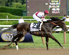 "Royal Delta 2013 Personal Ensign Stakes Photo 8"" x 10 - 24"" x 30"""