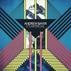 ANDREW BAYER - IT'S ARTIFICIAL USED - VERY GOOD CD