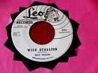 BILLY WILSON~ WILD STALLION~ GUITAR ROCKER~ WITH LOVE~ LEO 8306~VG+~ COUNTRY 45