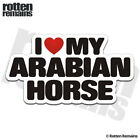 Arabian I Love My Horse Decal Horses Trailer Car Truck Gloss Sticker HGV