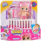 Little Live Bizzy Bubs - Choose Your Doll