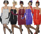 Ladies Charleston Flapper Costume Adults 1920s Gatsby Fancy Dress Womens New