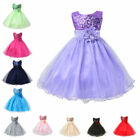 Formal Kids Flower Girl Dress Princess Bridesmaid Party Wedd