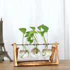 Wooden Stand Clear Glass Flower Plant Pot Hanging Cradle Ball Vase Fish Tank RS