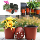1/10Pcs Plastic Plant Pot Nutritional Nursery Containers Mini Garden Decor Pop
