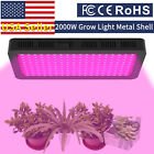LED Grow Light 3000W 2000W 1800W 1500W 1000W Full Spectrum Full Band Upgraded. Buy it now for 77.61