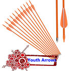 New Fiberglass Arrows Youth Archery Compound Recurve Bow Practise Shooting 6/12X