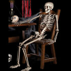 Halloween Poseable Life Size Party Prop Skeleton Decor Human Anatomy Mode US HOT