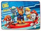 Paw Patrol Accent Room Rug 30 inches x 46 inches